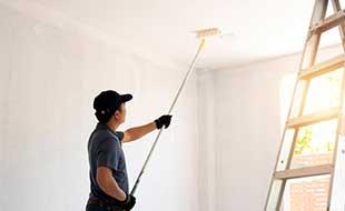 External Wall Painting / Internal Wall Painting